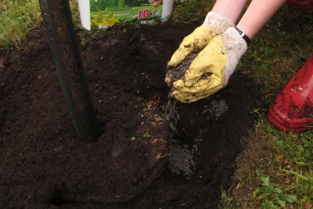 Biolan Sodinimo ir rudeninės trąšos