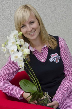 Biolan Orchidėjų trąšos RAIN MIX